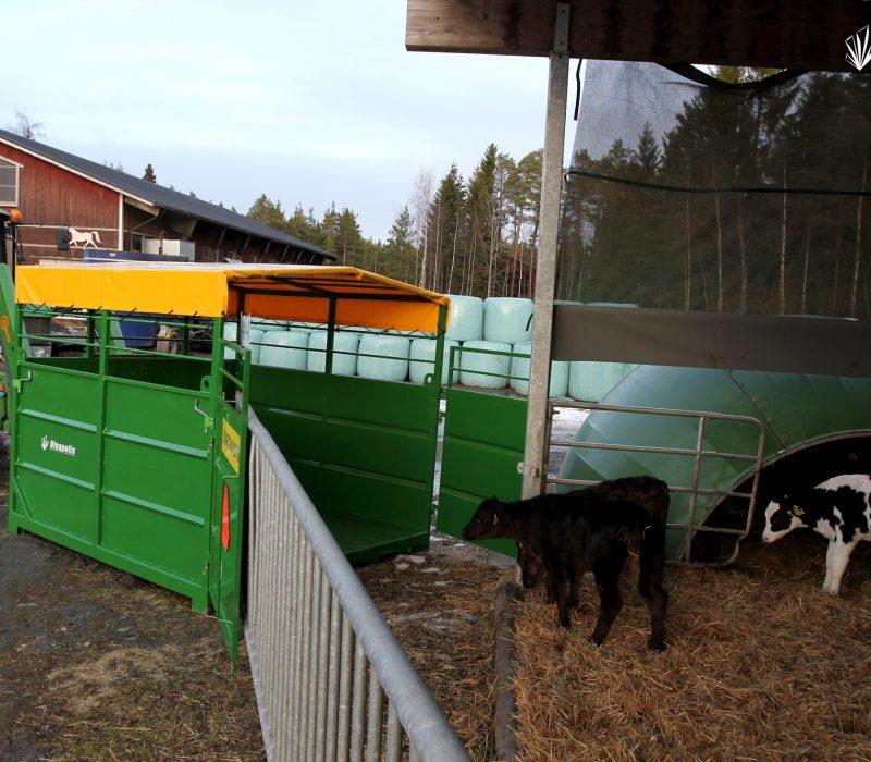 4. Gyvuliu gardas1
